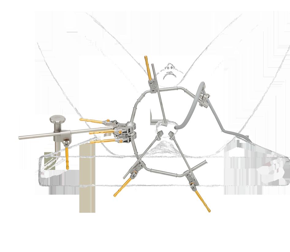 proktologie-mit-zeichnung